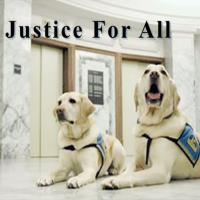Courthouse Dogs Video-min